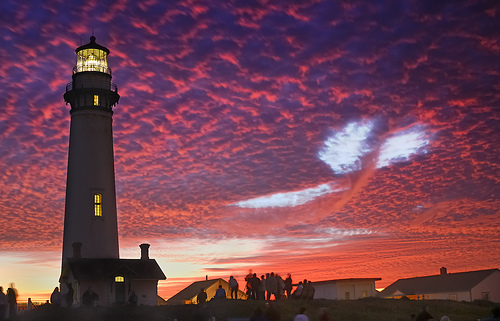 Pigeon Point/Sky Whale