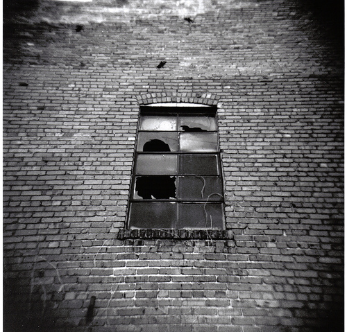 Broken Factory Window by ansel mcadams