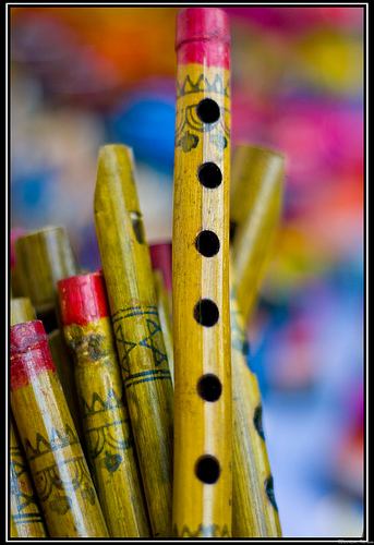 The Flute by Bindhass Madhavi