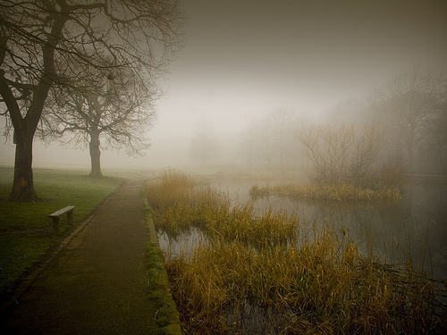 A bleak Duck Pond by Tricky