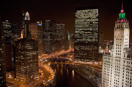 Chicago River by Giant Ginkgo