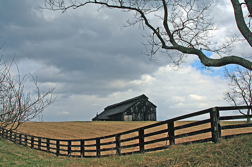 Barn, Fence, and Tree by code poet