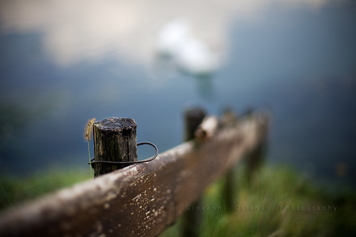 The wooden fence by jjjohn