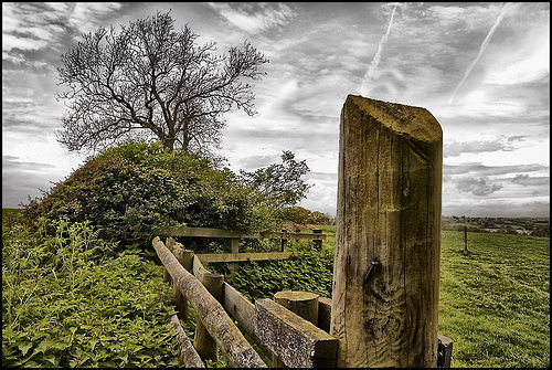 The Fence Post. by pdeee454