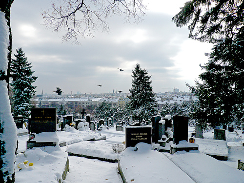 The City Of Vienna Viewed From Hernals Cemetery