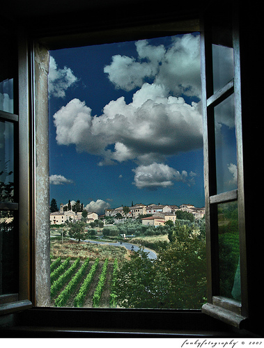 from my apartment window in tuscany
