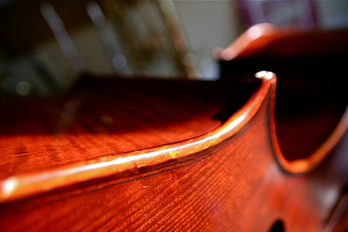 Cello String Instrument