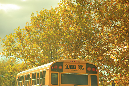 Autumn School Bus Nostalgia