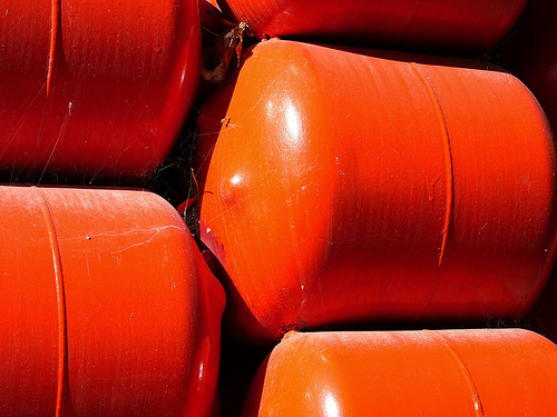 Orange Canisters