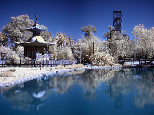 Using An Infrared Filter In Photography