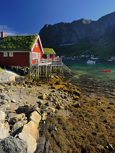 Close to Reine (Lofoten)