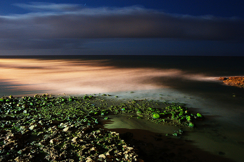 Night seascape (long exposure)