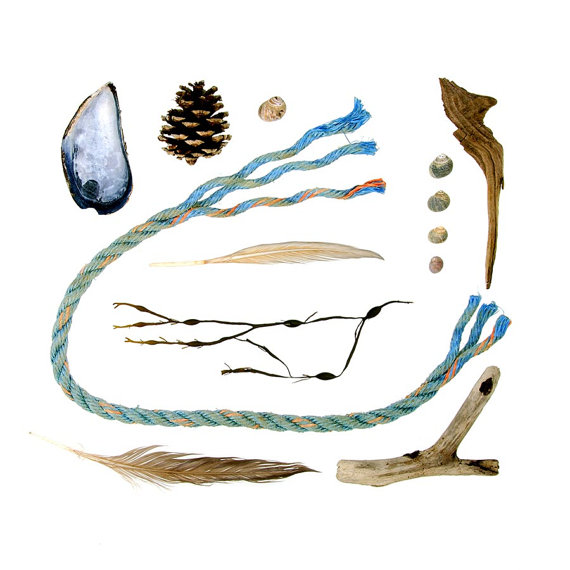 Beachcombing series No.47 feather rope pine cone