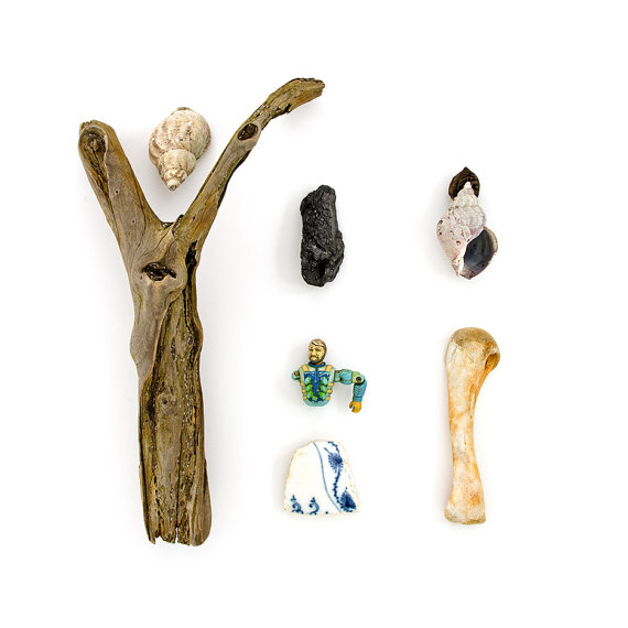 Beachcombing series No.32 driftwood, bone, shell