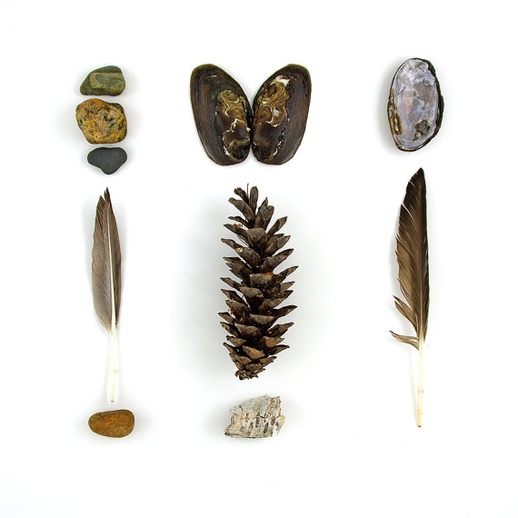 Beachcombing series No.39 rocks and feathers