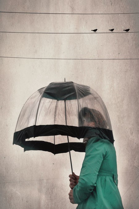 Whimsical Print - Three Birds umbrella portrait - soft grey mint green photograph charming home decor wall art