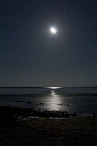 beach moon at night