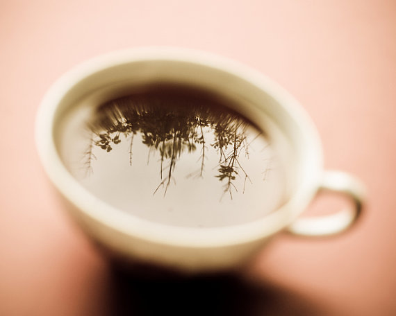 Tea cup photograph - Art for Kitchen Still life tea time reflection trees