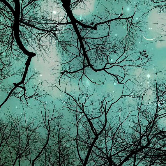 celestial Art sagittarius moon and star trees night