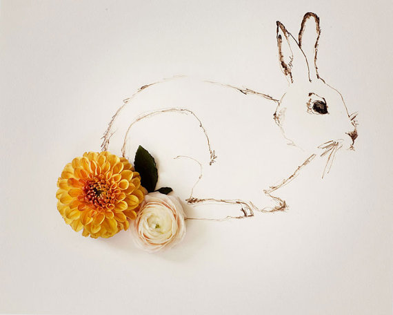 rabbit drawing flowers tail
