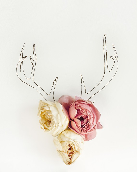 antler drawing flowers