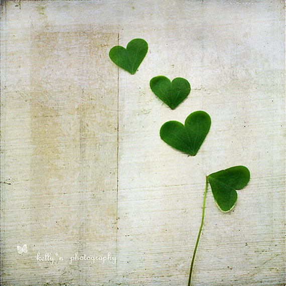 shamrock hearts love and luck