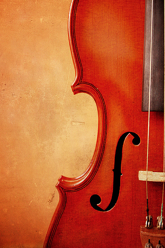 Heart of Music violin