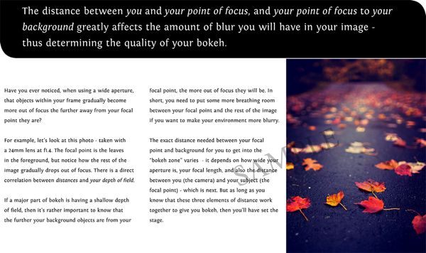 The Art of Bokeh - A guide to using shallow depths in landscape