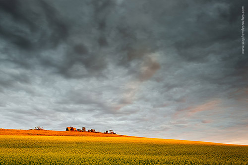 Storm clouds over a field on Prince Edward Island - Canada