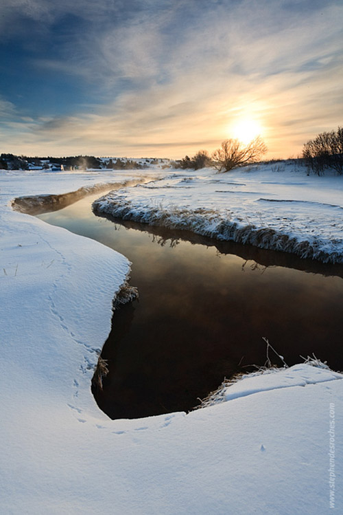 Wildlife tracks in the snow along a riverside on Prince Edward Island - Canada