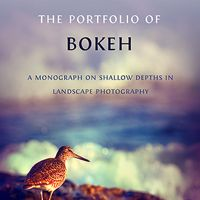 The Portfolio of Bokeh eBook: A Monograph on Shallow Depths