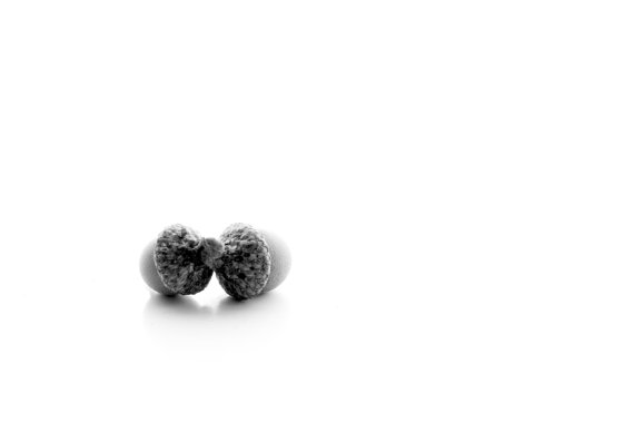 Twins Black and White Acorn