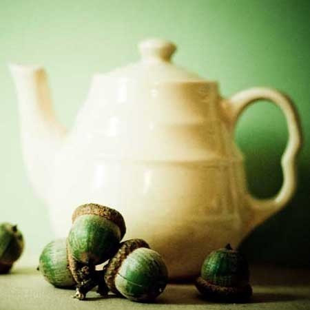 Teapot and Acorns