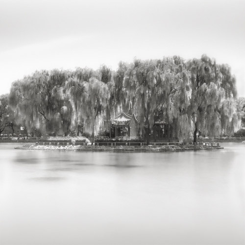 infrared trees along the water, black and white fine art photography.