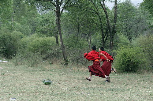 China - Young Monks Racing