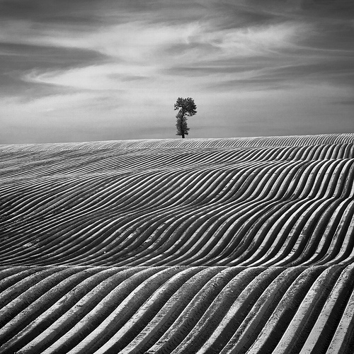 The Surreal Photo Artist : Dariusz Klimczak
