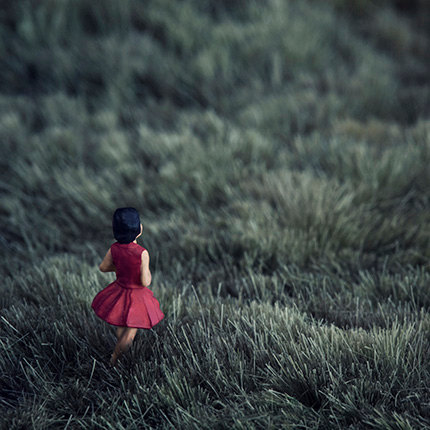 Rose twilight field with girl in red