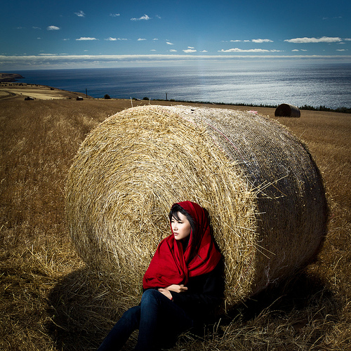 in the bales side by James Yu