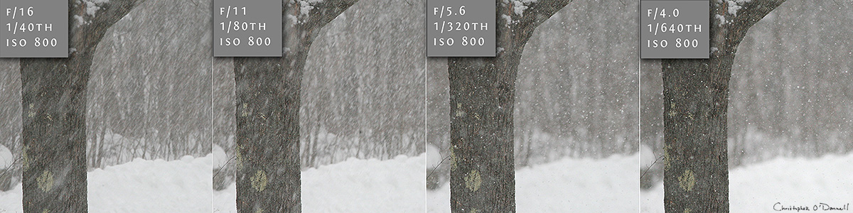 This side by side comparison shows how by changing your aperture - and thus, your shutter speed - you can greatly change how your falling snow appears.