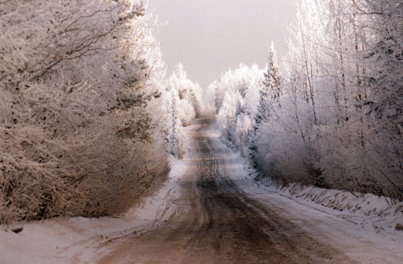 Snowy winter road in the country