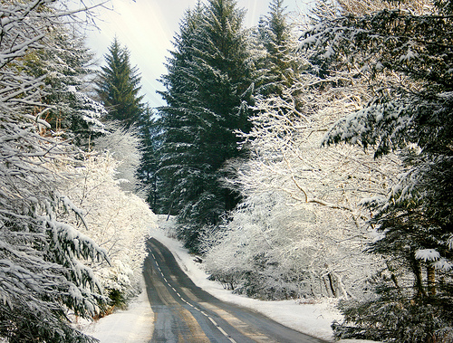 Snowy road in Galloway