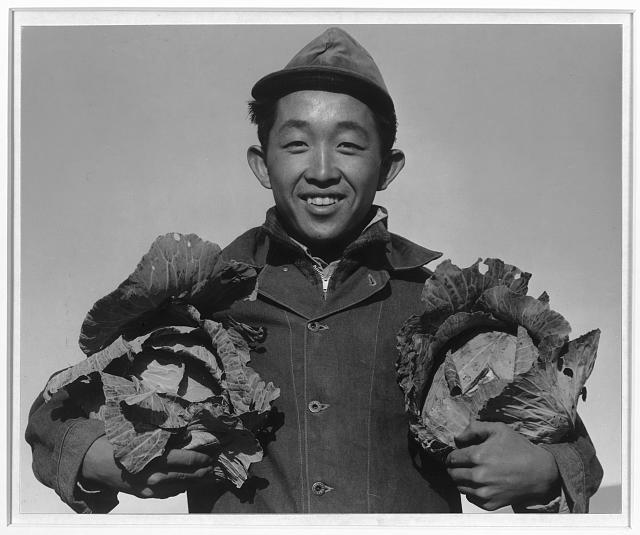 Richard Kobayashi, farmer with cabbages ansel adams