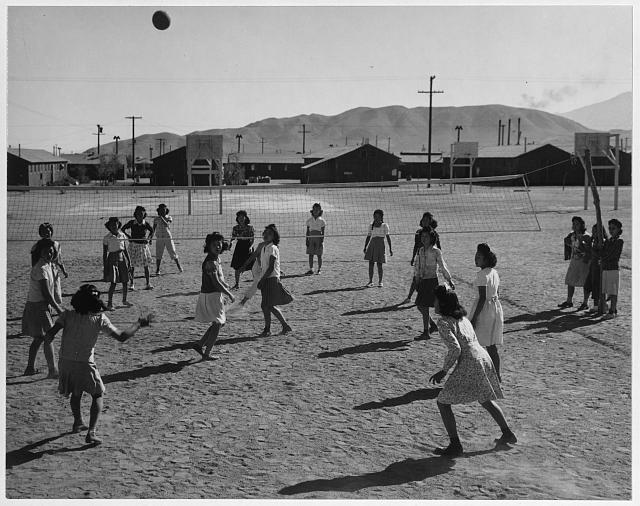 Vollyball ansel adams volleyball