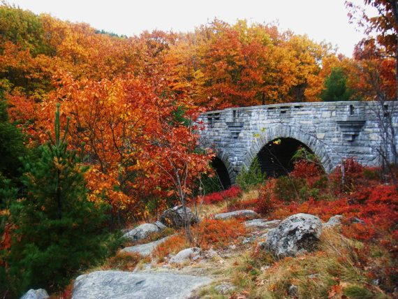 Duck Brook Bridge in Acadia National Park in Autumn