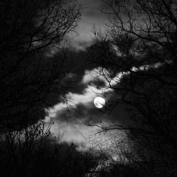 Moon Dragon black and white photography