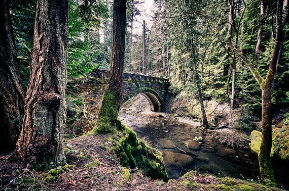 Old Stone bridge over a creek in the forest