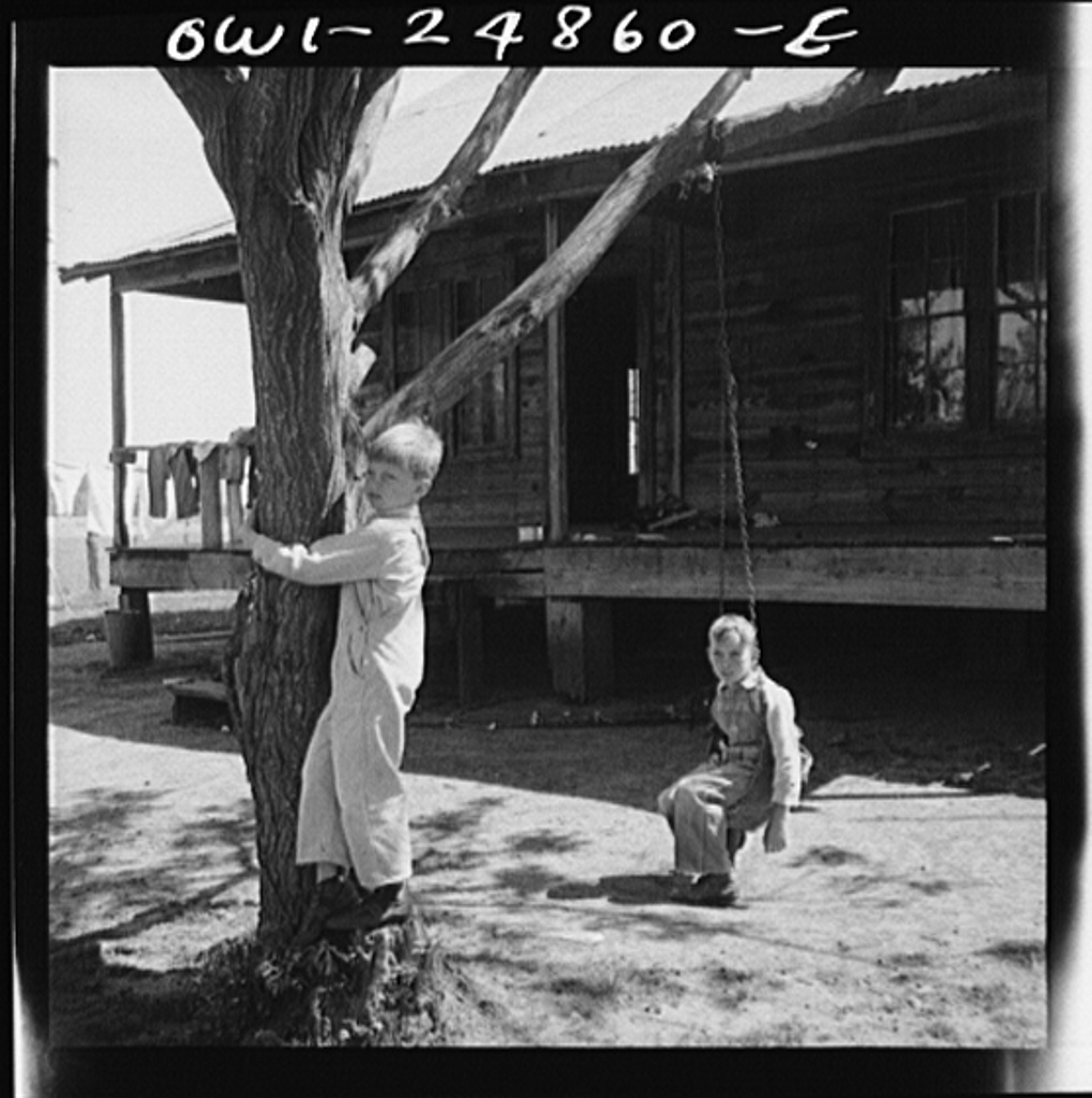 Nacogdoches County, Texas. Children of a farmer in a pine woods area