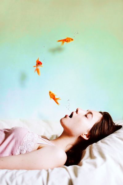 dream portrait goldfish