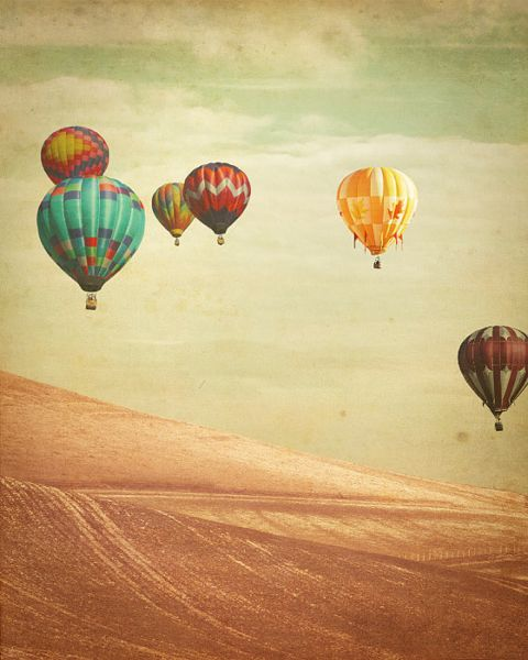 hot air balloons over field