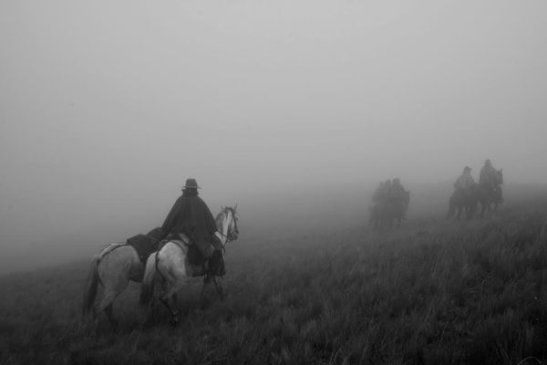 The Horsemen of the Americas  Pictures of Working Cowboys by Luis Fabini